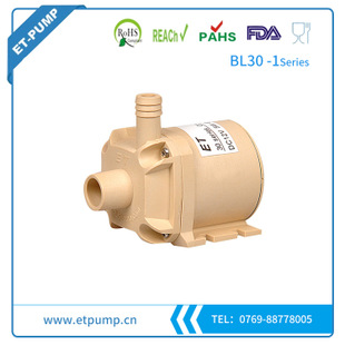 Brushless DC pump - BL30-01 Series
